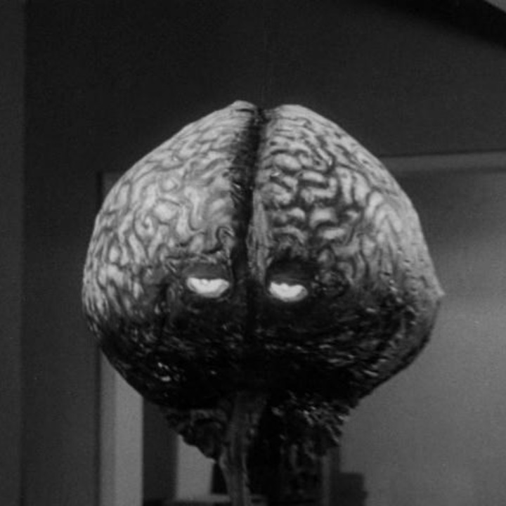 The brain from planet Arous is essentially a floating human nervous system.