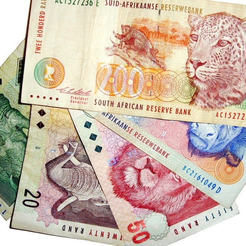 Animals on the South African Rand.