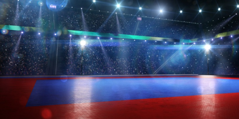 An example of a professional taekwondo competitive arena