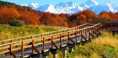 Part of the Tierra del Fuego National Park trail.
